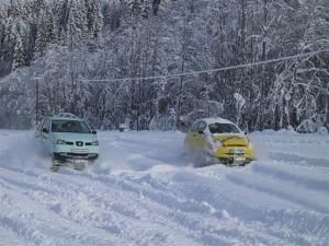 Snowmobil (2)